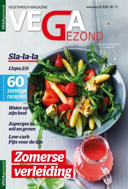 Vg11_NL_cover